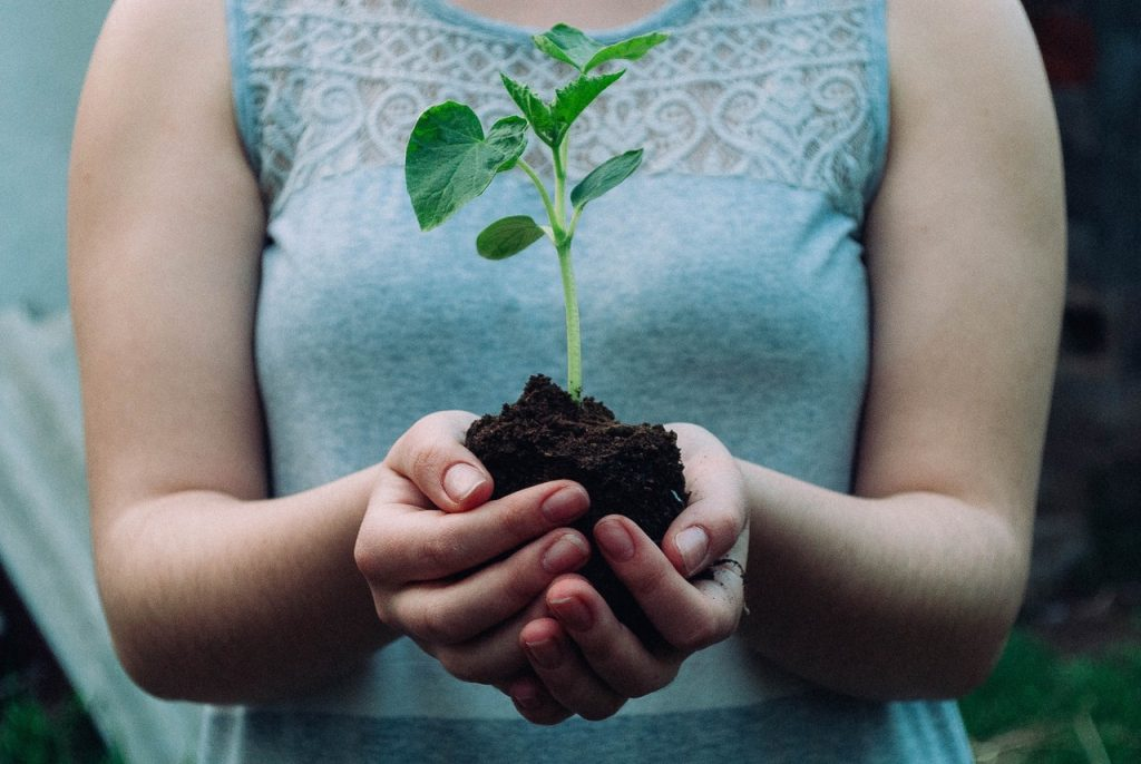 Female in casual dress cupping a baby plant in dirt in her bare hands | Heidi McBain, Women's Counselor & Online Therapist in Flower Mound, Texas